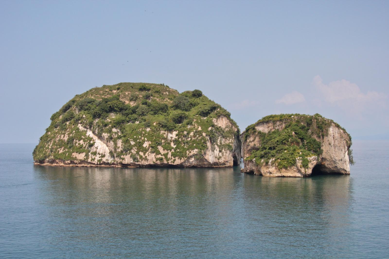 Banderas Bay – Home to Biodiverse Flora and Fauna