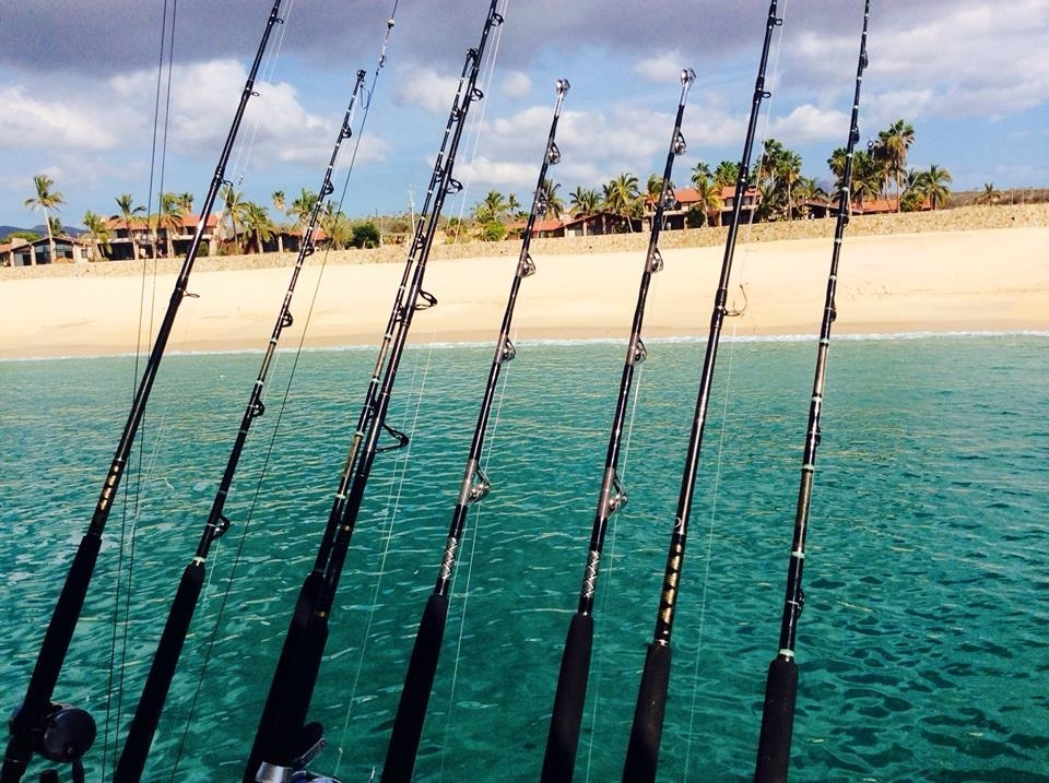 Fishing in Cabo: Black & Blue Tournament