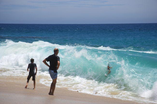 Activities in Los Cabos
