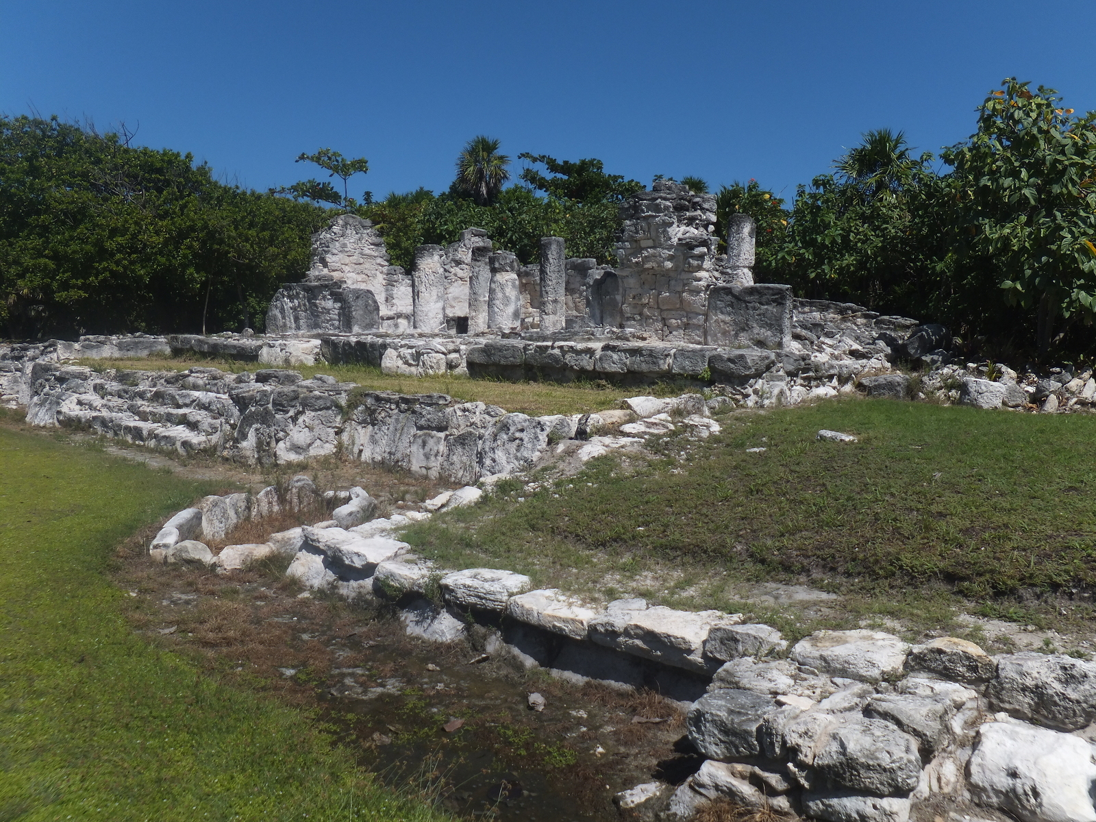 Cancun: Iguanas and History at El Rey Ruins